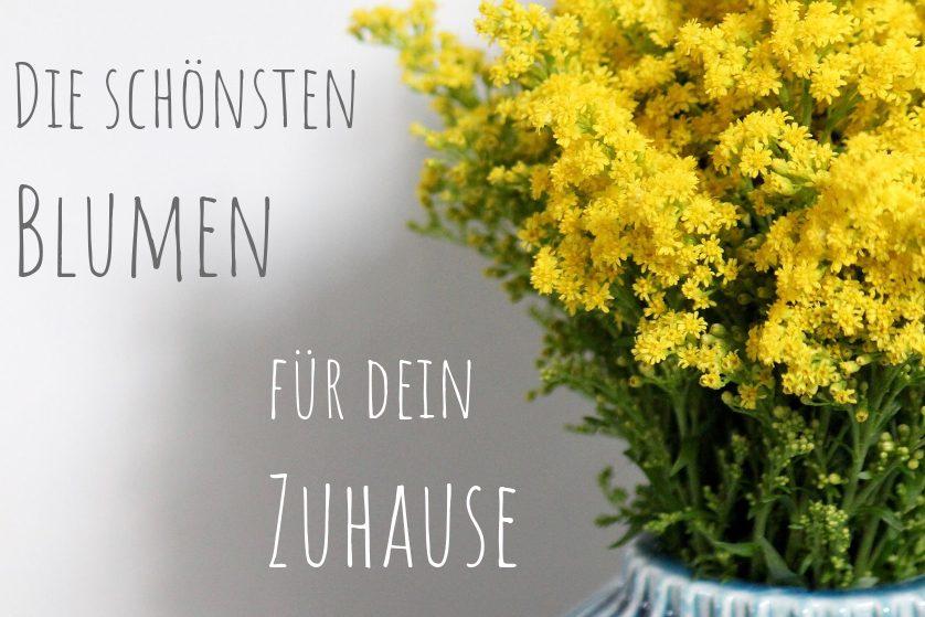 Die-schönsten-Blumen-zuhause-Titelbild